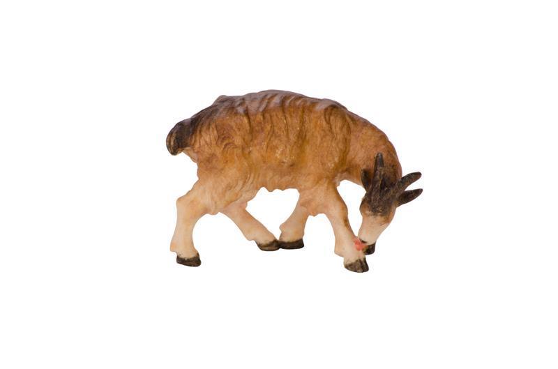 Коза в поклоне