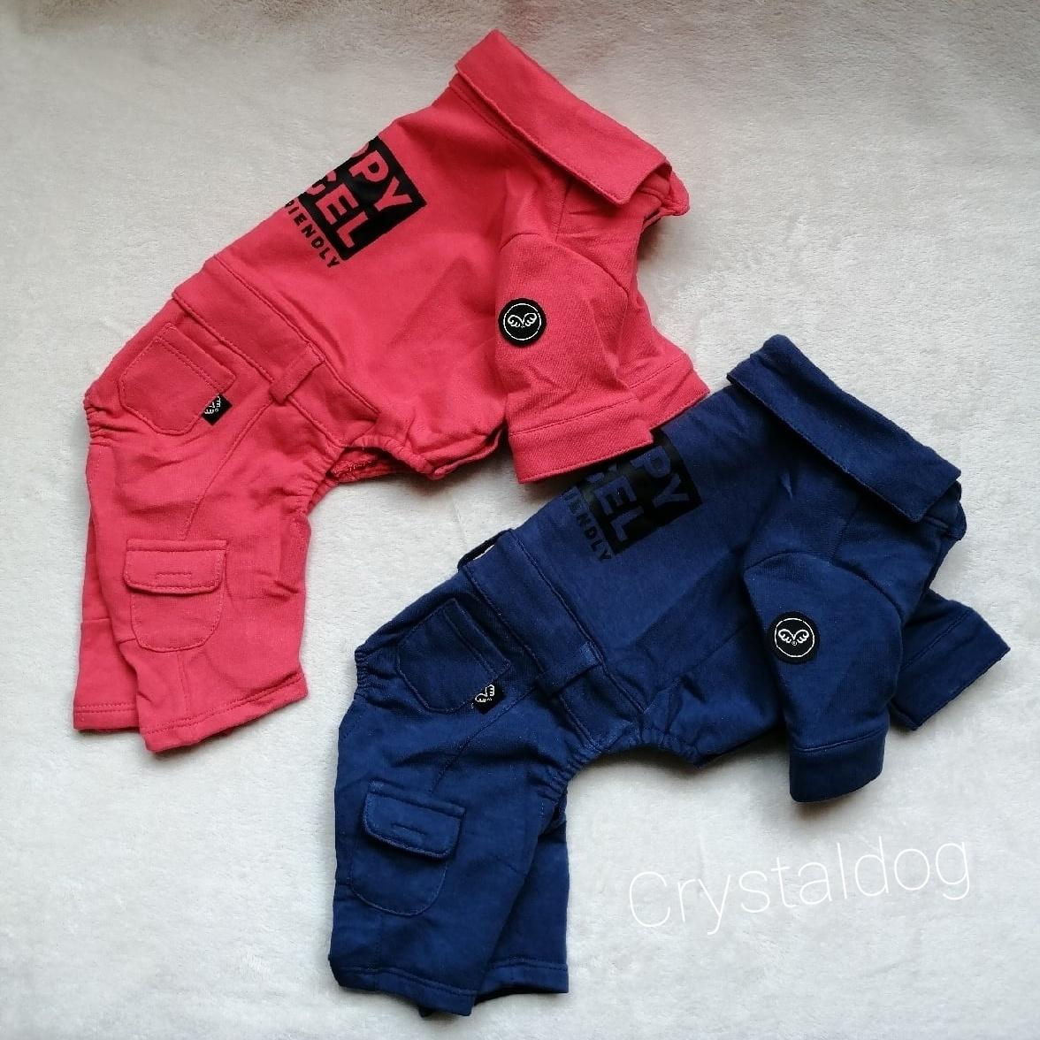 Одежда для йорков фото