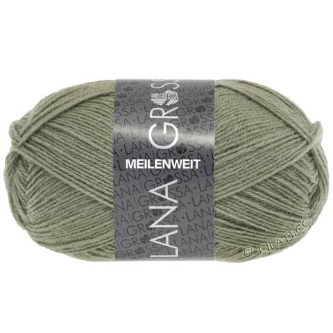 Lana Grossa Meilenweit Uni 50 (1382) купить