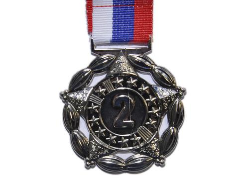 Медаль двусторонняя с лентой (триколор), 2 место. Диаметр медали 5 см, толщина медали 2 мм. Вес медали с лентой 30 г. Длина ленты 41 см, ширина ленты 2,5 см. 1904-2
