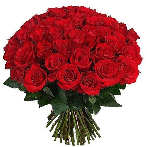 Букет живых роз БР02