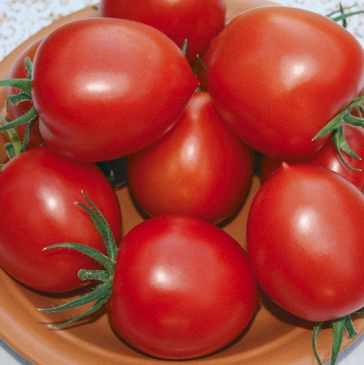 Гавриш Мадера F1 семена томата детерминантного (Гавриш) Мадера_семена_овощей_оптом.jpeg