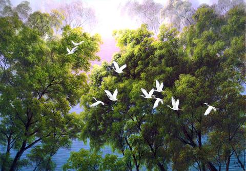 Картина раскраска по номерам 50x65 Птицы над деревьями