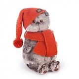 Кот Басик в вязаной шапке и шарфе