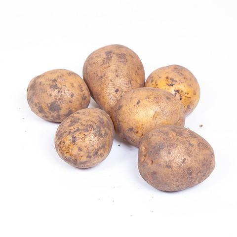 Картошка Гала (1.5 кг)