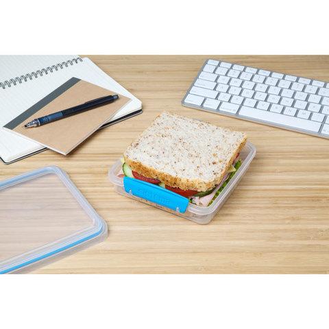 """Контейнер для сэндвичей Sistema """"TO GO"""" 450 мл, зеленый, цвет Голубой"""