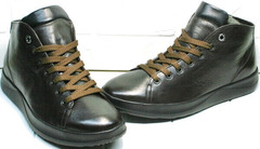 Модные молодежные ботинки кеды утепленные мужские Ikoc 1770-5 B-Brown.