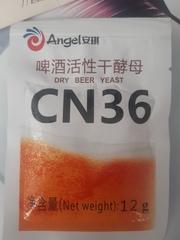 элевые дрожжи ангел cn36