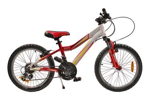 Велосипед Gravity Elite 20