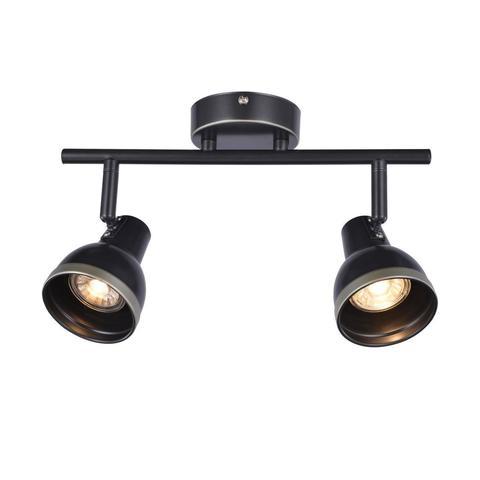 Потолочный светильник Favourite 2392-2U