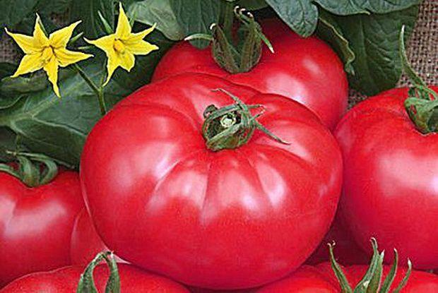 Гавриш Турмалин семена томата детерминантного (Гавриш) Турмалин_семена_овощей_оптом.jpeg