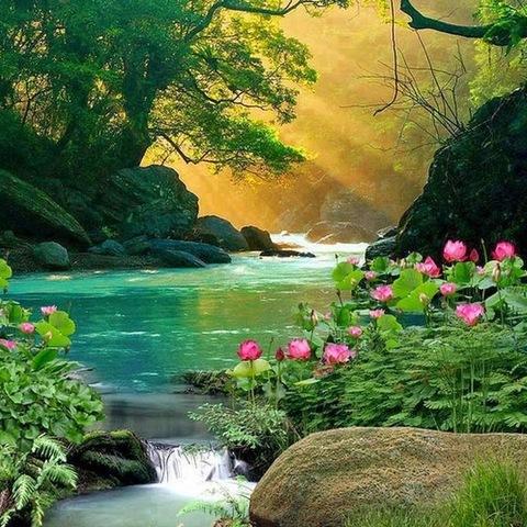 Алмазная Мозаика 40x50 Цветы и деревья у реки (арт. GA70047)