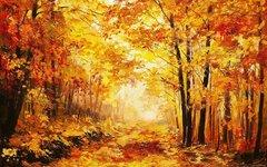 Алмазная Мозаика + Багет 40x50 Густой осенний лес