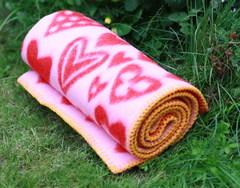Одеяло/плед,