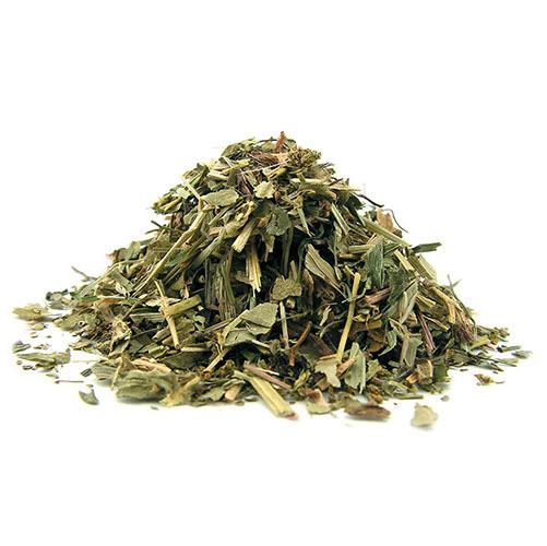 Травы Манжетка обыкновенная alchemilla-50.jpg