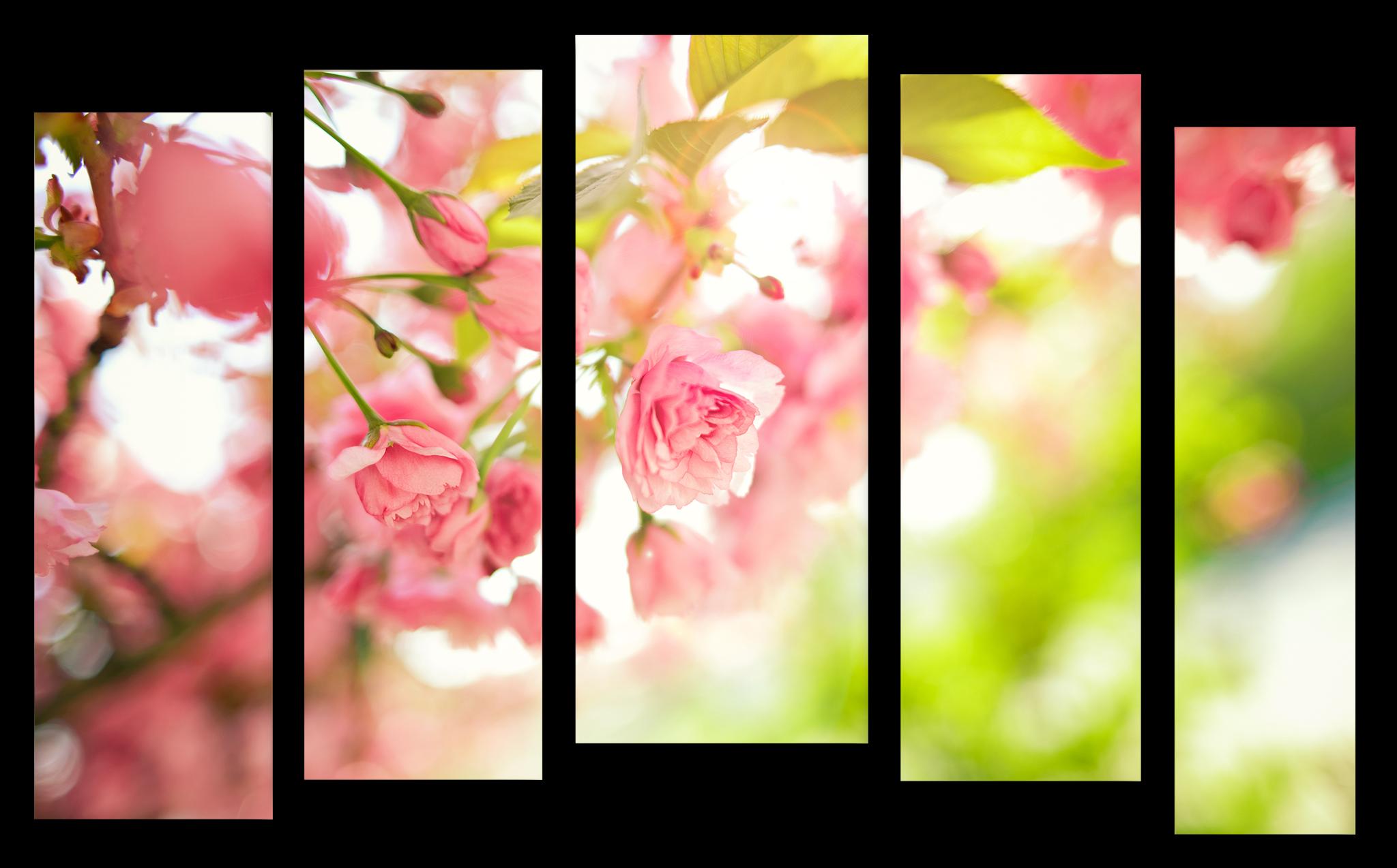 """Цветы Модульная картина """"Нежность магнолий"""" М1028_M_загибы_90х60.png"""