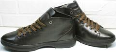 Демисезонные мужские ботинки кроссовки для повседневной ходьбы Ikoc 1770-5 B-Brown.