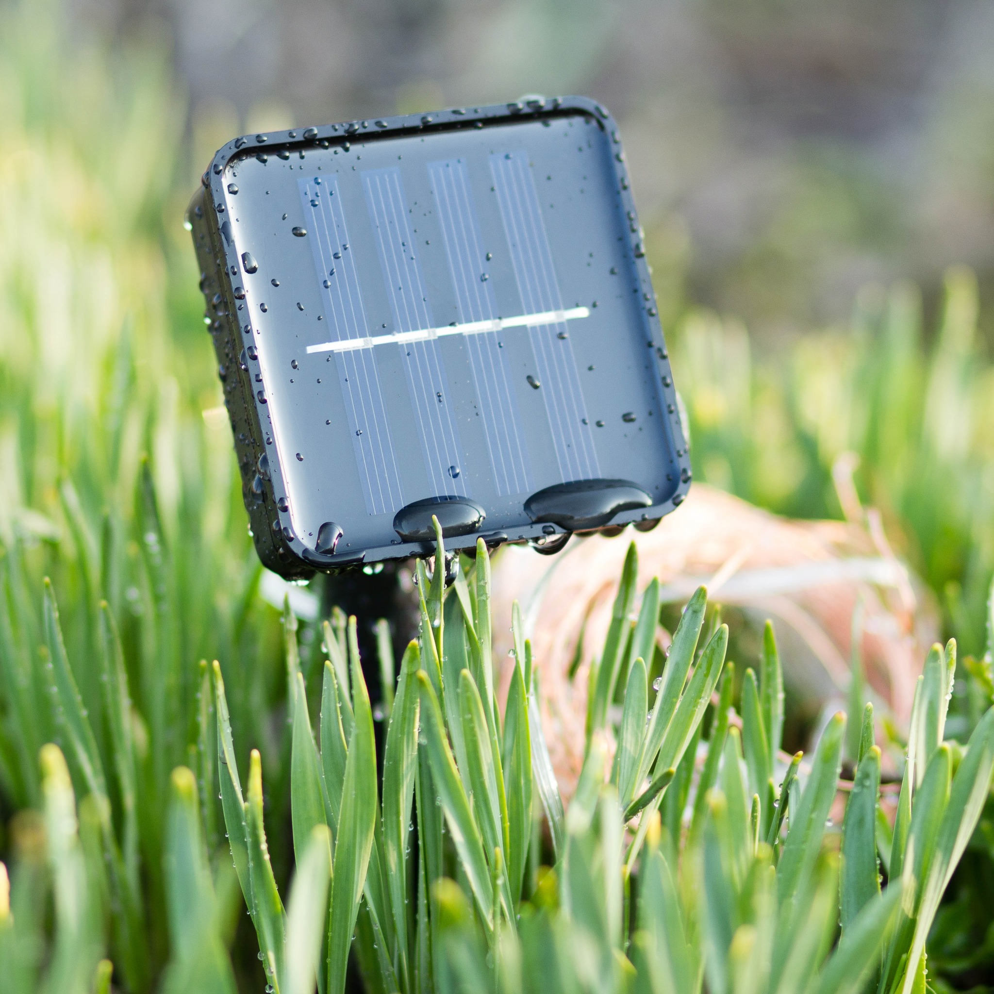 Гирлянда-нить на солнечной батарее EPECOLED золотая (10 метров, 100LED)