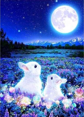 Алмазная Мозаика 20x30 Белые кролики под луной (арт. MTCH8224)