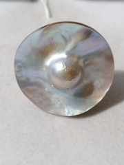 Теро  (кольцо из серебра)