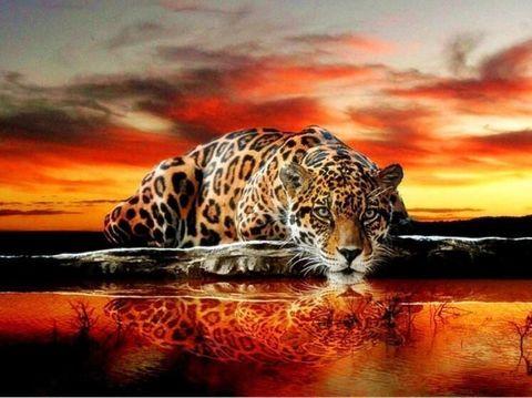 Алмазная Мозаика 40x50 Тигрица выслеживает добычу (арт. TC3367)