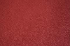 Искусственная кожа Alba-Project (Альба-Прожект) D584