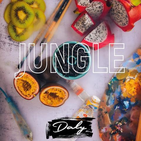 Кальянная смесь Daly Jungle 50 г
