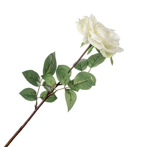 Роза белая  71 см