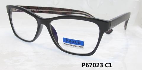 P67023 C1