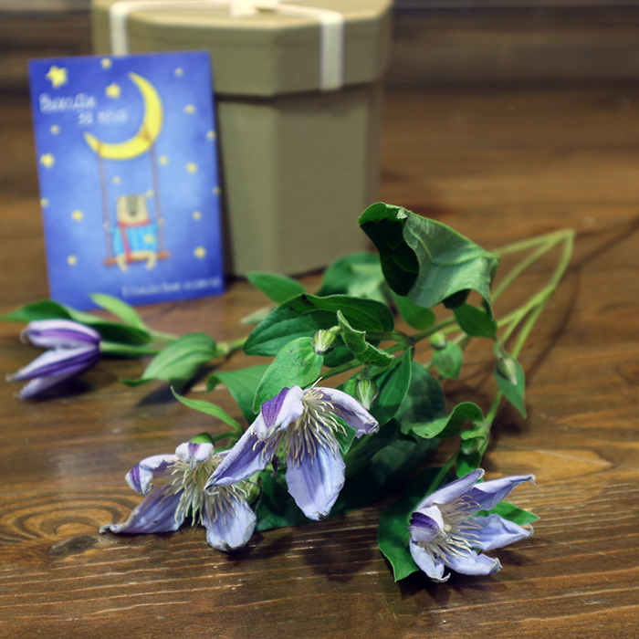 Клематис 1шт купить цветы в Перми