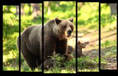 """Модульная картина """"Лесной медведь"""""""