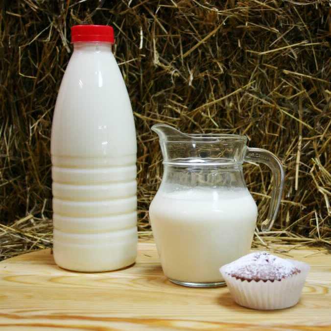 Фотография Йогурт фермерский из коровьего молока питьевой / 330 мл купить в магазине Афлора