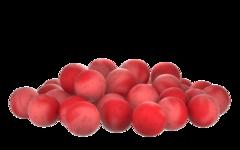 Бойлы насад. плав. двух цв. Sonik Baits CRENBERRY-SHRIMP Fluo Pop-ups 14мм 90мл