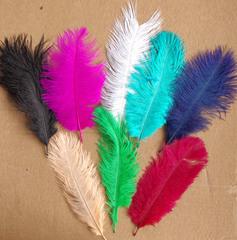 Перья страуса  декоративные 20-25 см. Уценка, категория 1. (выбрать цвет)