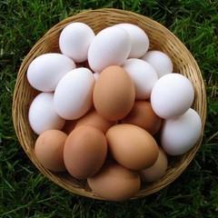 Яйца куриные фермерские С1 / 1 десяток