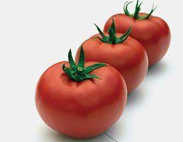 Томат Тривет F1 семена томата полудетерминантного (Syngenta / Сингента) Тривет_F1_семена_овощей_оптом.jpg