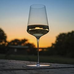 Бокалы для белого вина «Phoenix», 6 шт, 420 мл, фото 5