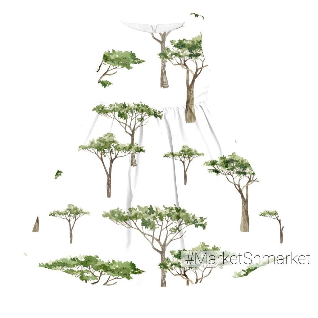 Деревья Африки - Акация