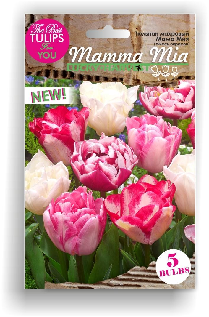 Тюльпан махровый микс Mamma Mia (Мама Мия) ТМ LUCKY HARVEST  5 шт