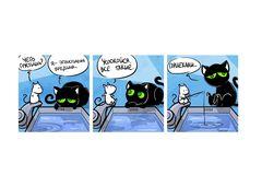 Кошки-мышки. Старый новый друг