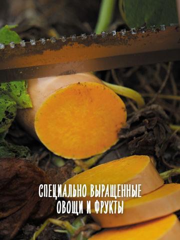 Снеки органические морковь-апельсин