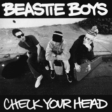 Beastie Boys / Check Your Head (2LP)