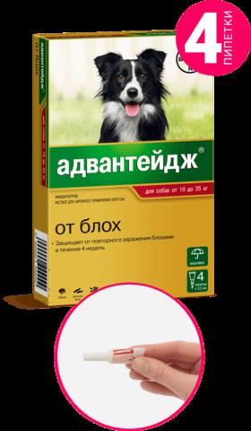 Адвантейдж для собак от 10 до 25 кг   4 пип.
