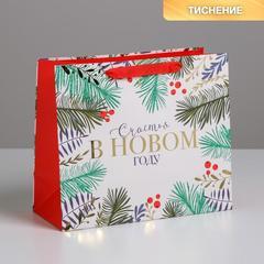 Пакет ламинированный горизонтальный «Счастья», ML 27 × 23 × 11,5 см, 1 шт.