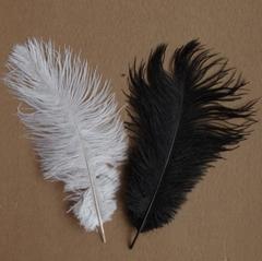 Перья страуса  декоративные 25-30 см. Уценка, категория 1 (цена за 1 шт.) (выбрать цвет)