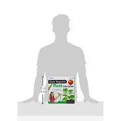 LER6045 Развивающая игрушка Жизненный цикл растений, упаковка