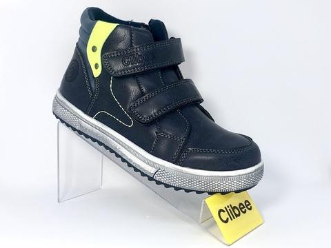 Clibee P221