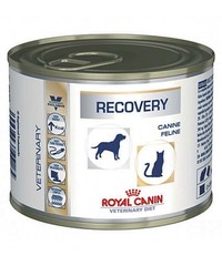 Royal Canin Recovery (интенсивная терапия)