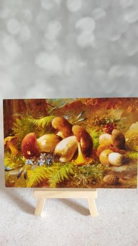 Натюрморт с лесными грибами