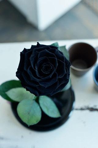 Роза в колбе Premium-Хит, черная